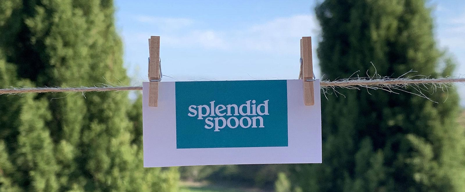 Splendid Spoon Coupons