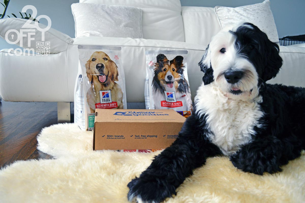 Chewy Pet Food Delivery