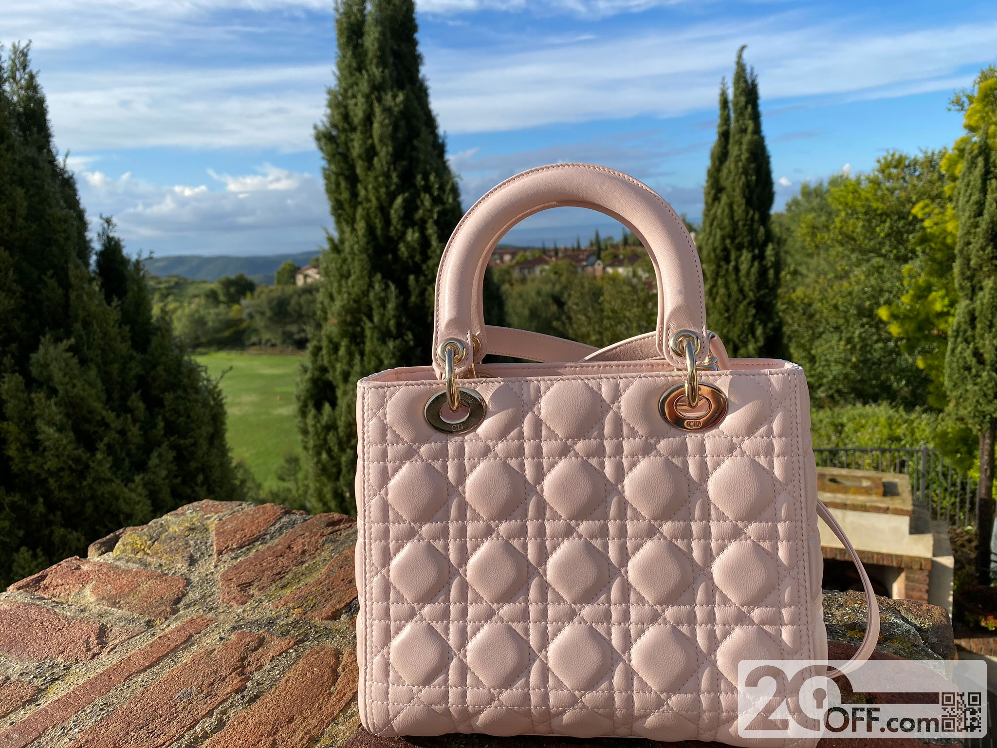 Nice Dior Bag for Mom