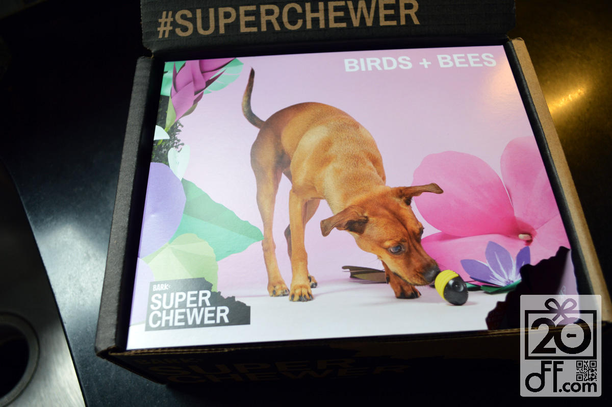 Super Chewer Birds Plus Bees