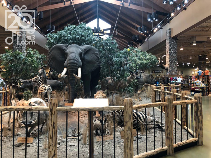Bunch of Animals at Cabela's Store