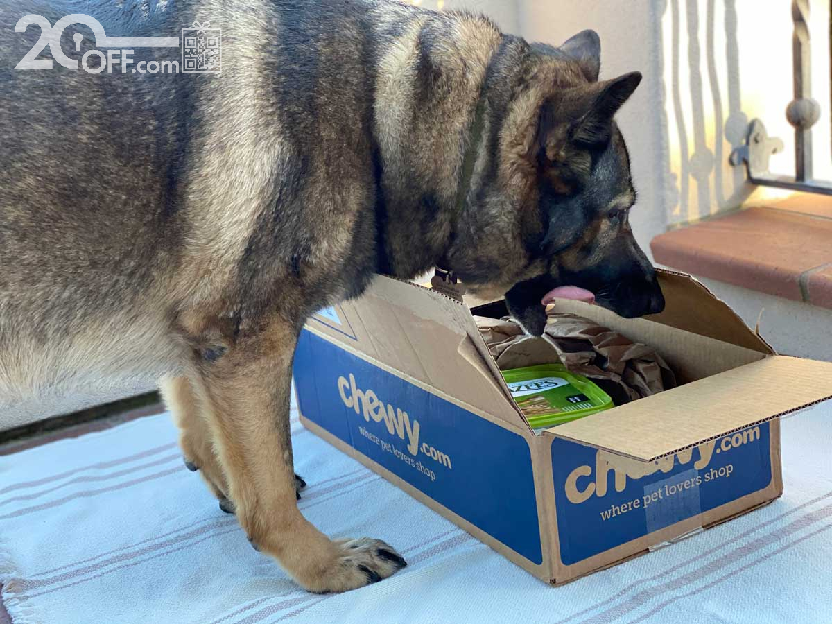 Chewy Delivery for German Shepherd