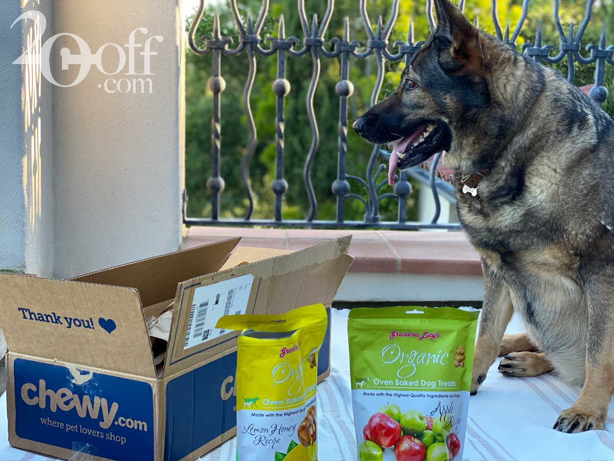 Chewy Dog Food Delivery Promo