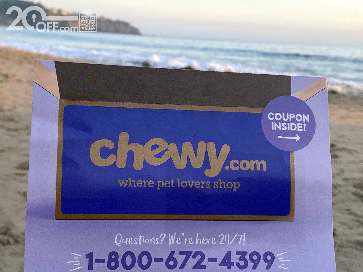 chewy Dig Food Discount
