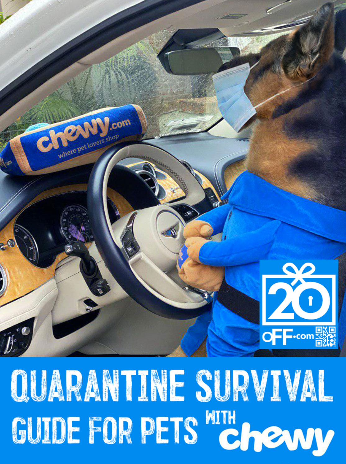 Chewy Quarantine Survival Guide
