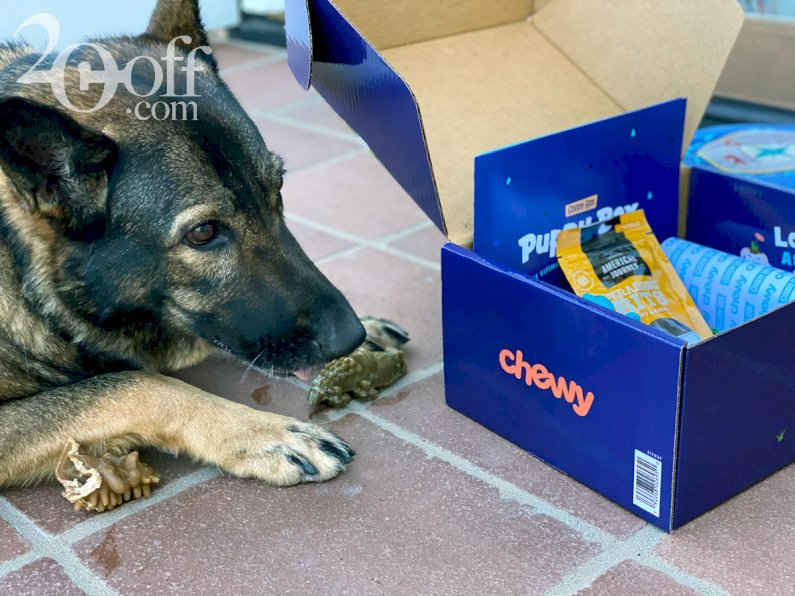Chewy's Puppy Box 2020