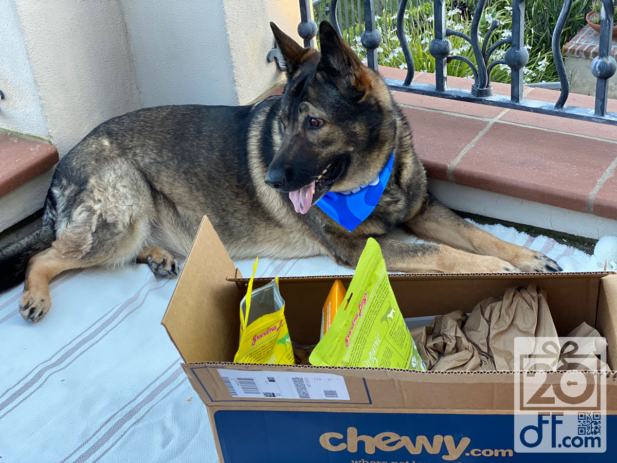 Essential Dog Products for Chewy Autoship