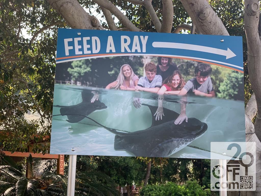 Feed a Ray Signpost