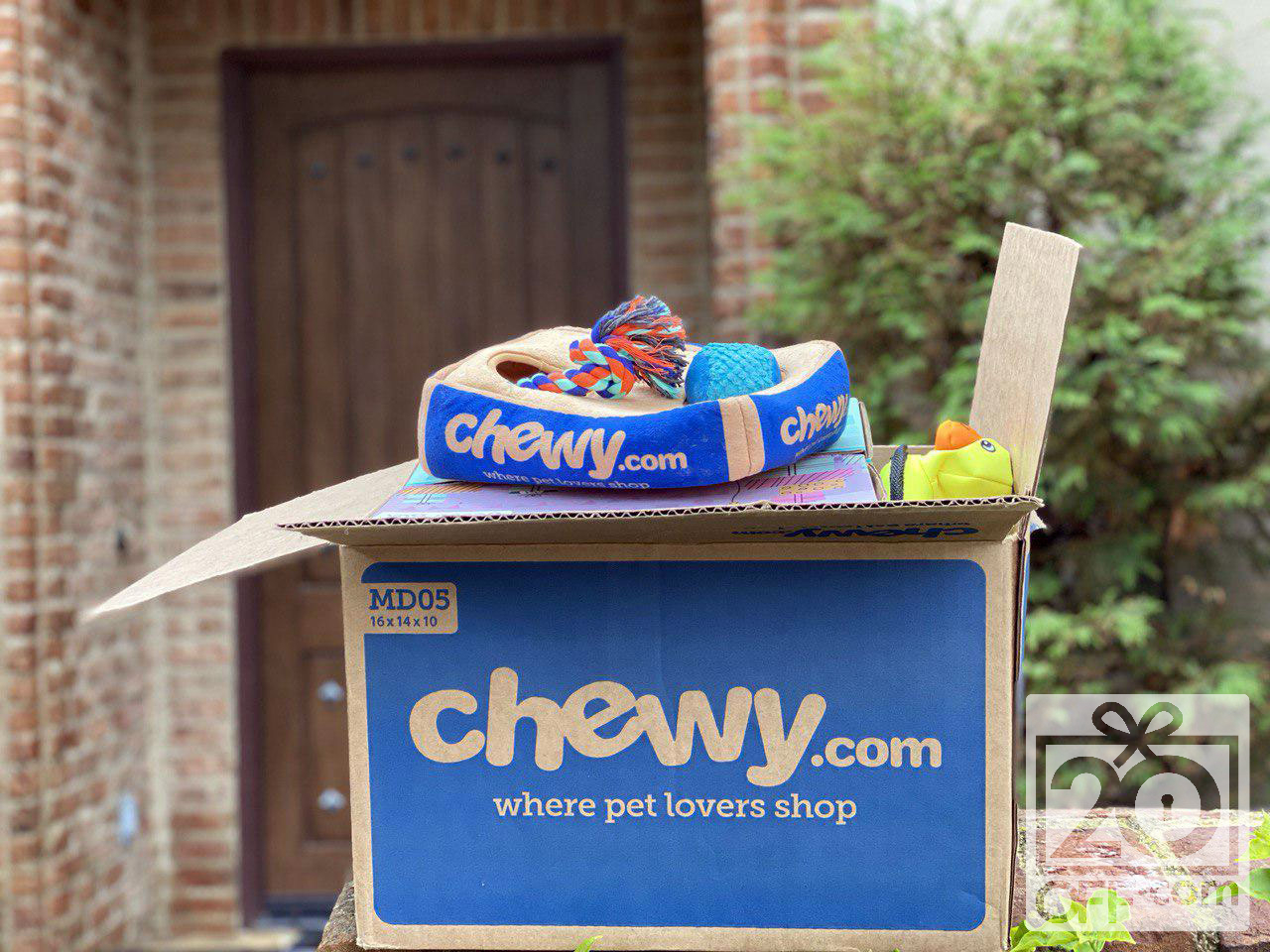 How to Survive With Chewy.com